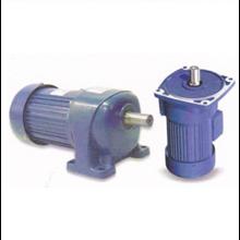 Helical Gear Motor G3LM