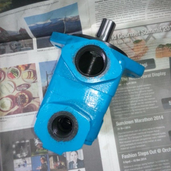 Integral V10 V20 Vane Pump Hidrolik