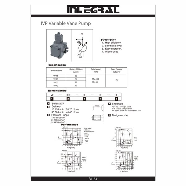 Integral IVP Hydraulic Variable Vane Pump