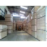 Beli Plywood Palem (Kayu Lapis Palem) 4