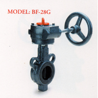 Cast Iron Butterfly Valve BF-28G