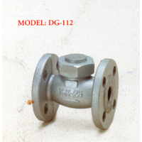 Ductile Iron Lift Check Valve DG-112