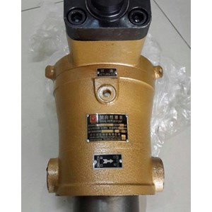 HIDROLIK PUMP YCY 63/80