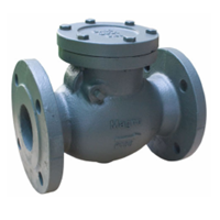 Check Valve Magno Swing Type FCS 16