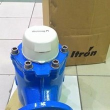 itron water meter woltmag