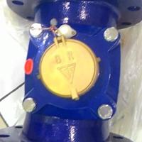 Water Meter B & R LXLG