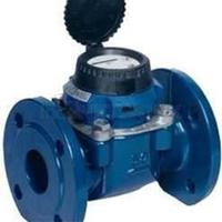 Water Meter Sensus WP Dynamic DN 80 PN 16
