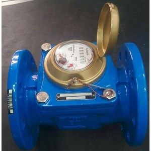 Water Meter Powogaz 50mm (2 inch)