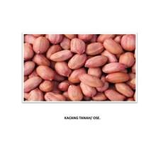 Kacang Tanah (Kacang Ose)