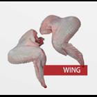 Daging Ayam Wing 1