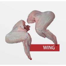 Daging Ayam Wing