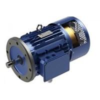 Electric Motor Glodok