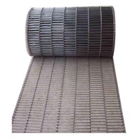 Wiremesh Conveyor Flat Leader