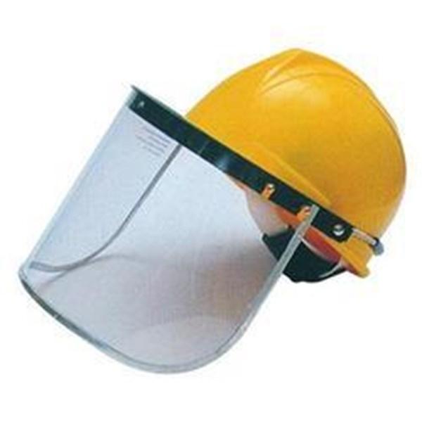 Face Shield BIYE