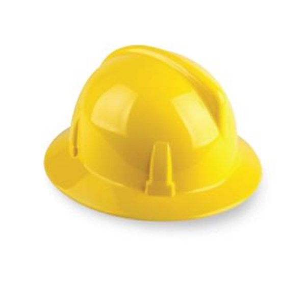 Helm MSA Topgard® Protective Hats