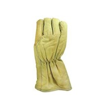 Cold Storage Glove CSG 001