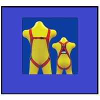 Full Body Harness CIG19451 and Lanyard CIG19617 1