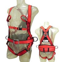 BODY HARNESS CIG19458 and CIG19K519 1