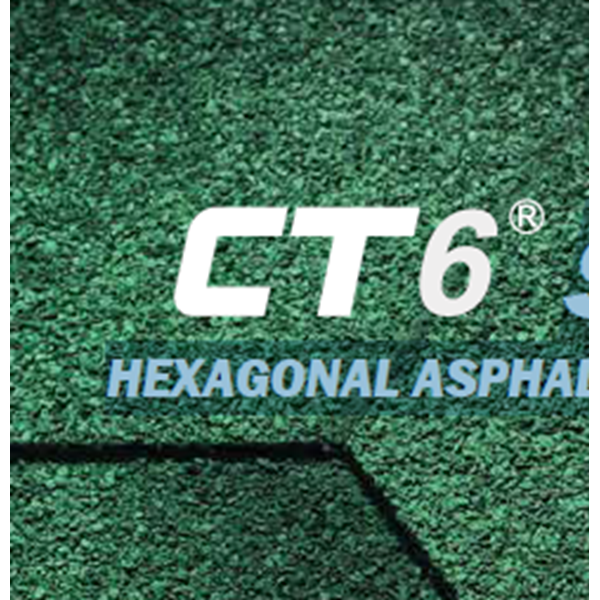 Genteng CT6 Shingle
