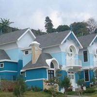 Genteng atap rumah murah 1