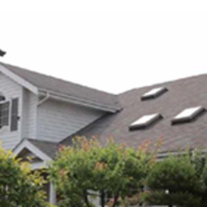 Genteng Atap Rumah CT3 Shingle