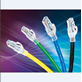 Patch Cord Belden Ethernet