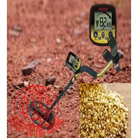 Detector Gold Bug DP Fisher Lab ( Alat Deteksi Emas )