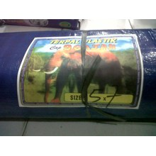 Plastic sheeting 5 meter x 7 meter stamp elephant