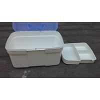 Jual Produk kotak obat plastik merk Lucky Star kode 2518 2