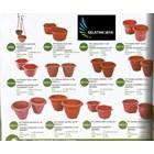 jual Pot plastik untuk tanaman bibit bunga merk lucky star 1