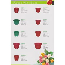 Round plastic Flower Pot Brand Sunflower plant
