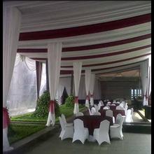 Tenda Pesta Sisir