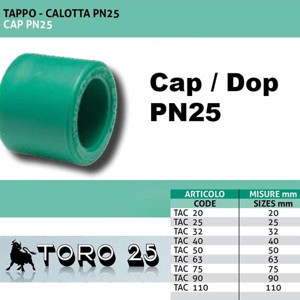Fitting Pipa Toro