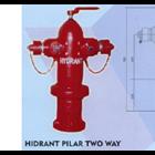Hydrant Pilar Two Way 1