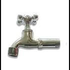 Sanitary Faucet 1