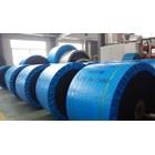 Conveyor Belt EP 200 1