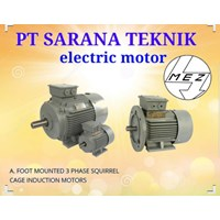 Foot Mounted 3 Phase Sequirrel PT Sarana Teknik