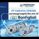 Geared motor Bonfiglioli 1