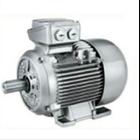 IEC Motor Siemens 1