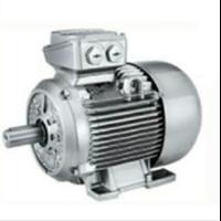 IEC Motor Siemens