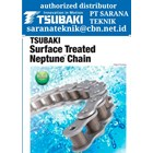 PT SARANA TEKNIK AGENT TSUBAKI Roller Chain & CONVEYOR CHAIN 2