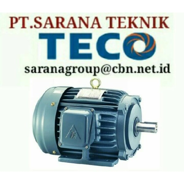 TECO ELECTRIC MOTOR PT SARANA TEKNIK SELL ELECTRIC TECO MOTOR TYPE AEEB 50 HZ