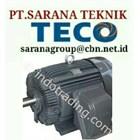 TECO ELECTRIC MOTOR PT SARANA TEKNIK SELL ELECTRIC TECO MOTOR TYPE AEEB 50 HZ B3 B5 FOOT MOUNTED & FLANGE 1