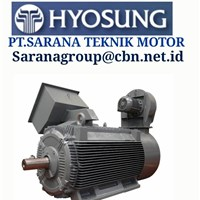 PT SARANA TEKNIK HYOSUNG ELECTRIC IEC MOTOR MEDIUM VOLTAGE