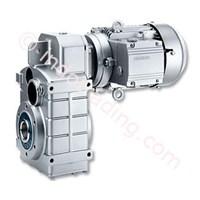 Motox Paralel Poros Gear Motor 1