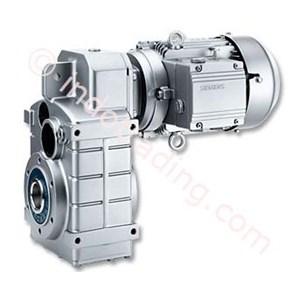 Motox Paralel Poros Gear Motor
