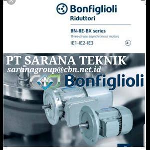 Electric Motor Bonfiglioli