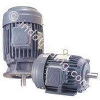 LIMING ELECTRIC MOTOR