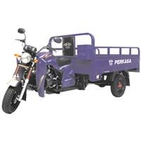motor roda tiga perkasa 200 nx