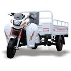Motor Roda Tiga Perkasa New 200 NX Niaga 1